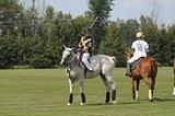 Manotick Polo Club -- 31 July 2011