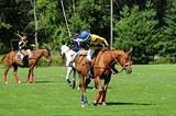 Manotick Polo Club of Ottawa Year End Tournament